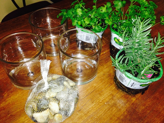 Supplies Indoor Herb Garden