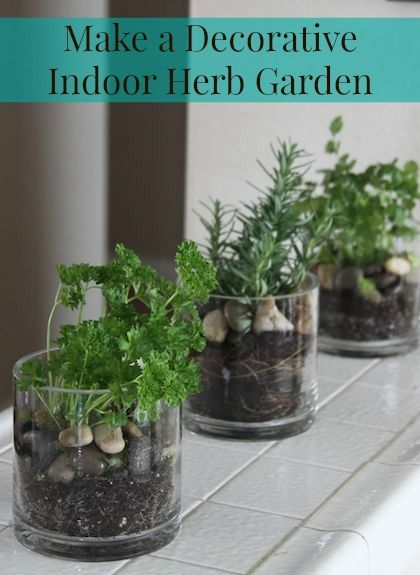 Make a simple decorative indoor herb garden