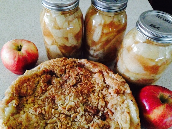Dutch Apple Pie recipe using Homemade Canned Pie Filling
