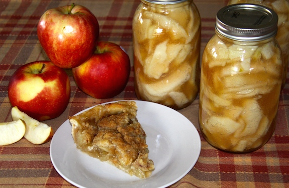 Make Dutch Apple Pie using homemade canned Pie Filling