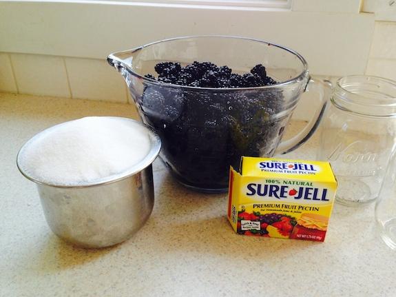 Ingredients for Blackberry Jam