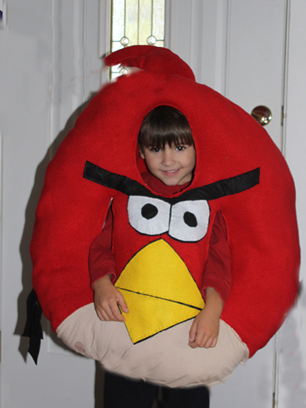 DIY Angry Bird Costume
