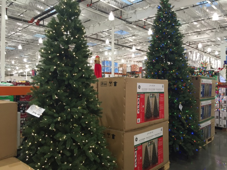 What You Can Find At Costco (October 2015