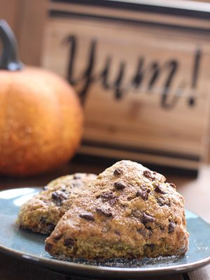 Chocolate Chip Pumpkin Scones