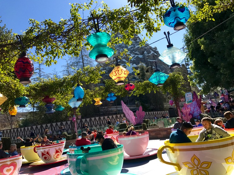 Disneyland teacups ride.