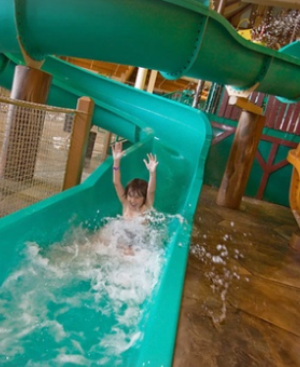 Wagjag deals for great wolf lodge