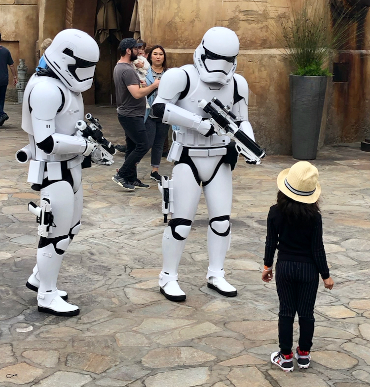 storm troopers stop a little girl